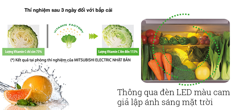Tủ lạnh Mitsubishi Electric MR-LX68EM-GSL - 555 Lít - Siêu thị ...