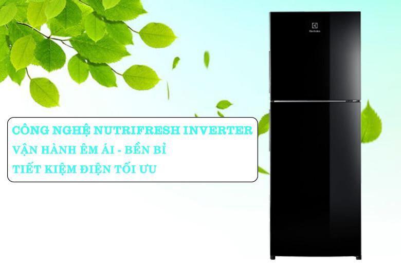 Tủ lạnh Electrolux Inverter 225 lít ETB2502J-H tiết kiệm điện