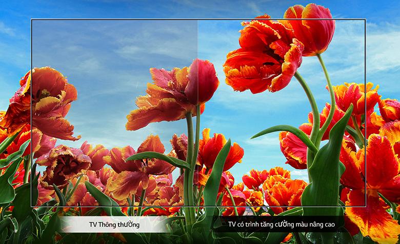 Smart Tivi LG 43 inch 43LN5600PTA chip xử lý lõi tứ