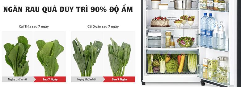 Tủ lạnh Hitachi Inverter 390 lít R-FVY510PGV0(GBK) ngăn rau quả giữ ẩm
