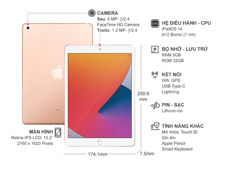 Kích thước - Máy tính bảng Apple iPad Gen 8 2020 Wifi MYLC2ZA/A 32GB 10.2 inch Vàng - Hàng chính hãng